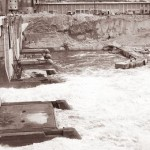 Hidroelectrica se restructureaza inainte de a iesi din insolventa