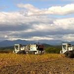 <!--:ro-->Prospectiuni SA exploreaza pentru Panfora Oil&Gas in perimetrul Curtici<!--:--><!--:en-->Prospectiuni SA Explores for Panfora Oil&Gas in Curtici Perimeter<!--:-->